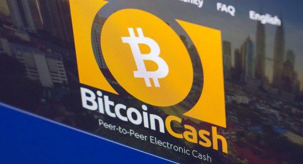 Популярность Bitcoin Cash не вселяет былых надежд