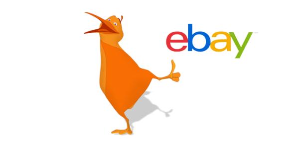 Qiwi будет доступен для оплаты на eBay